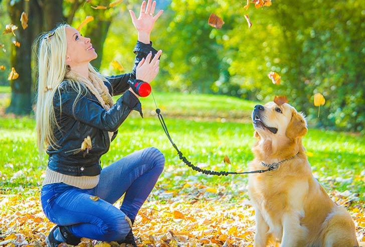 Lishinu Bungeeleine im Park mit Golden Retriever Herbst
