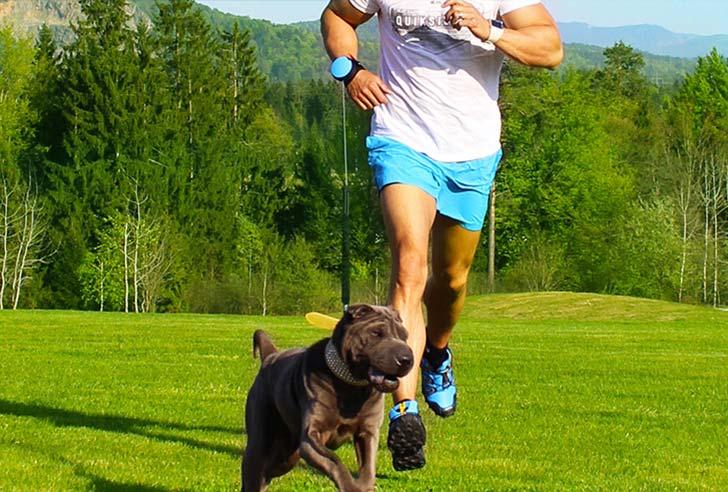 Lishinu Joggingleine Hund im Park Bulldogge